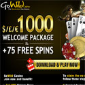 $1000 welcome offer @ Go Wil Casino!